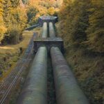 pipeline forest